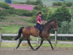 Rebecca Hughes with her own horse Touchdown Valley working at Elementary Level July 2010