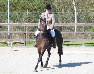 Fizz doing dressage at Sandyflat, Glasgow